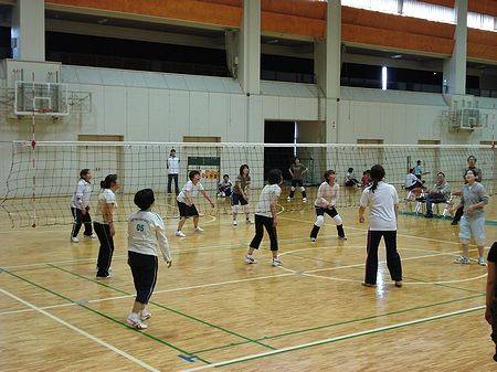 080525softvolleyball 001b.jpg