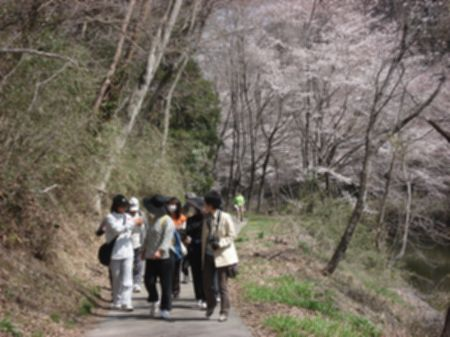 100410walking_nyuko 028b.jpg