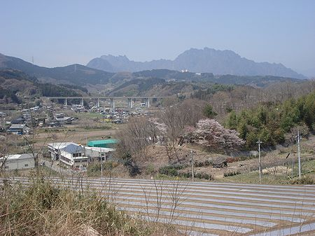 100410walking_nyuko 038b.jpg